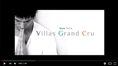 VILLA GRANDCRU 3D Animation